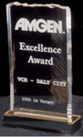 Ice Top Acrylic Award